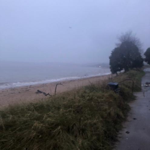 Misty Swansea Coastline